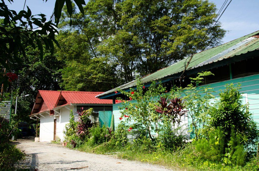 Kampong Lorong Buangkok, travel singapore, singapore guide