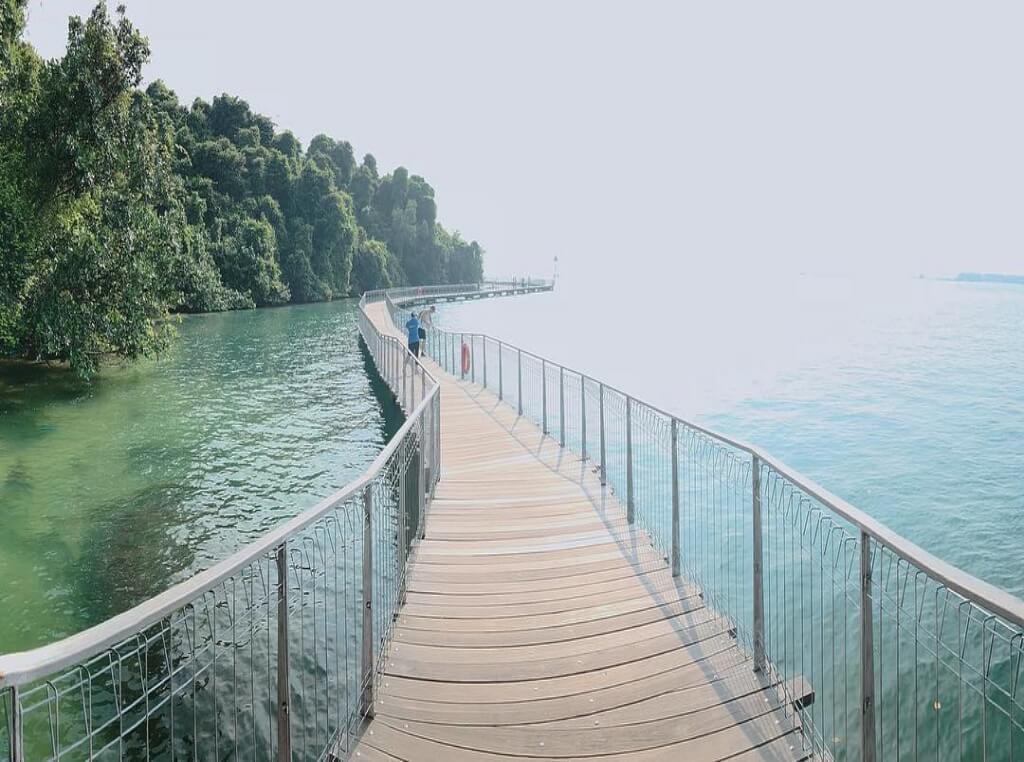 Check Jawa Wetlands, Pulau Ubin