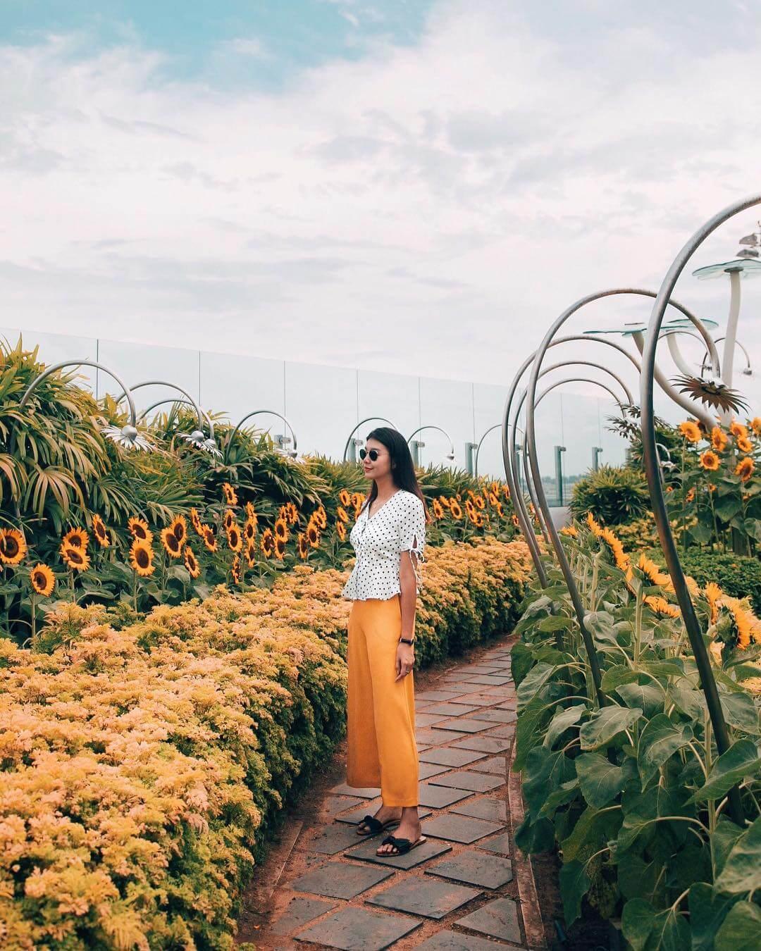 Taman Bunga Matahari di T2 | @amebeverly