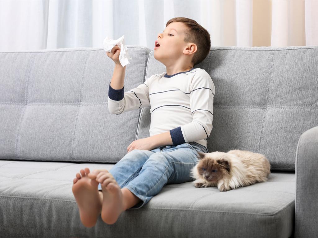 Allergy, Rhinitis, Treatment of Allergic Rhinitis