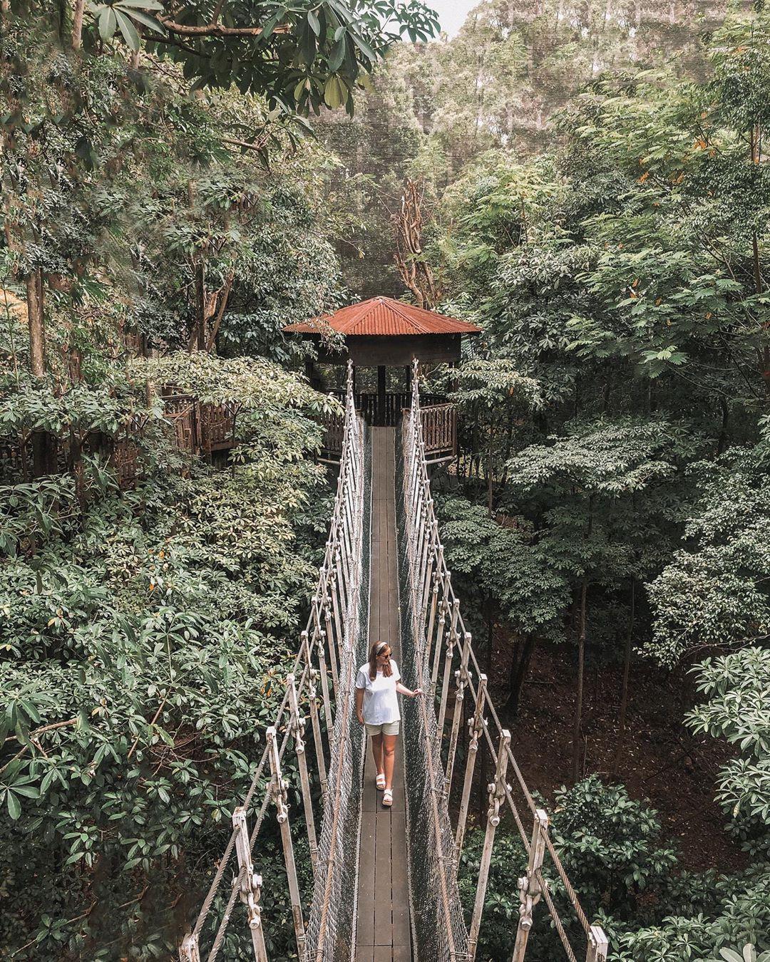 Jurong Bird Park, Wisata alam di Singapura