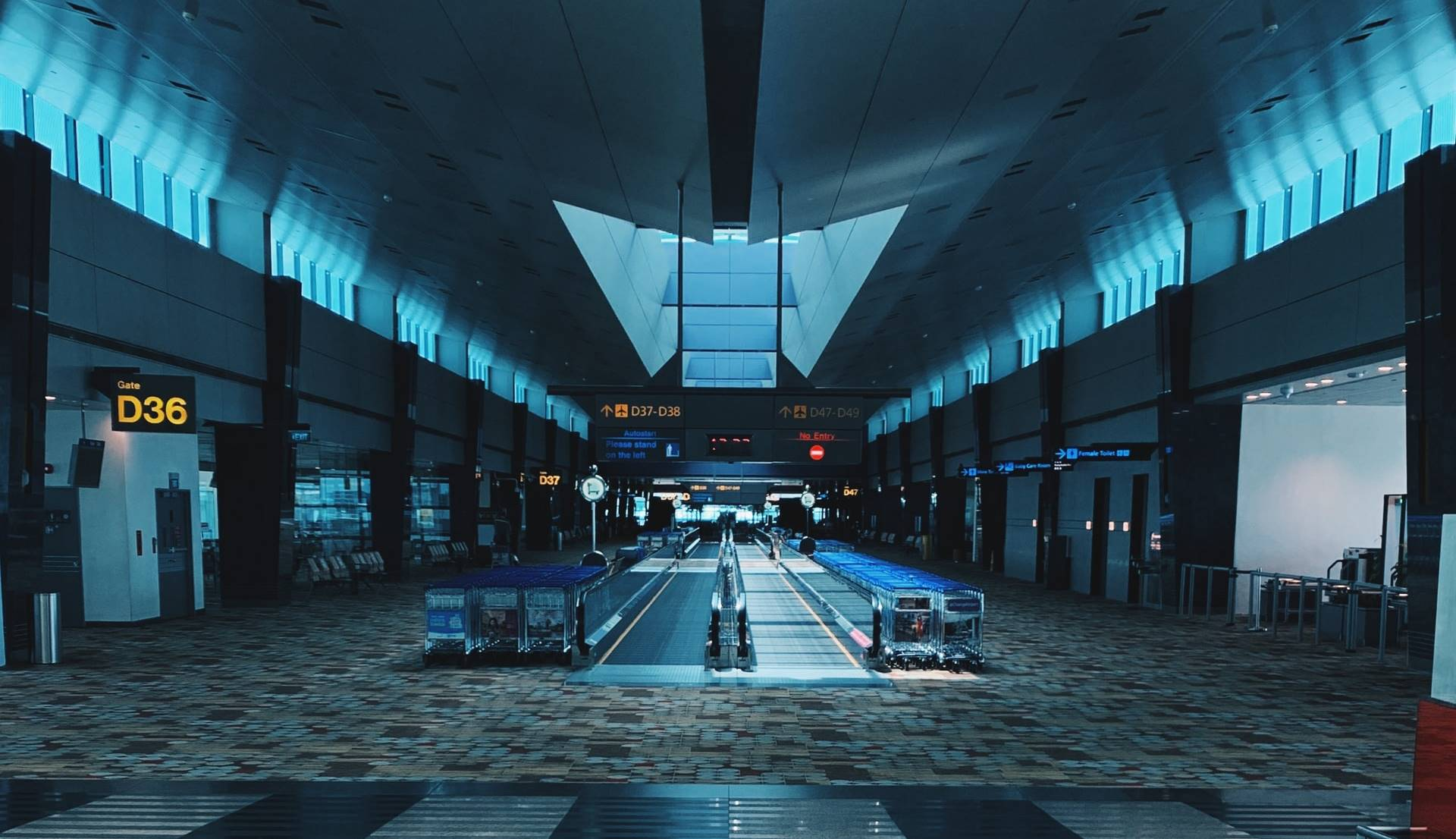 Ilustrasi Terminal Changi Airport Singapura. Photo by Grace Lim on Unsplash