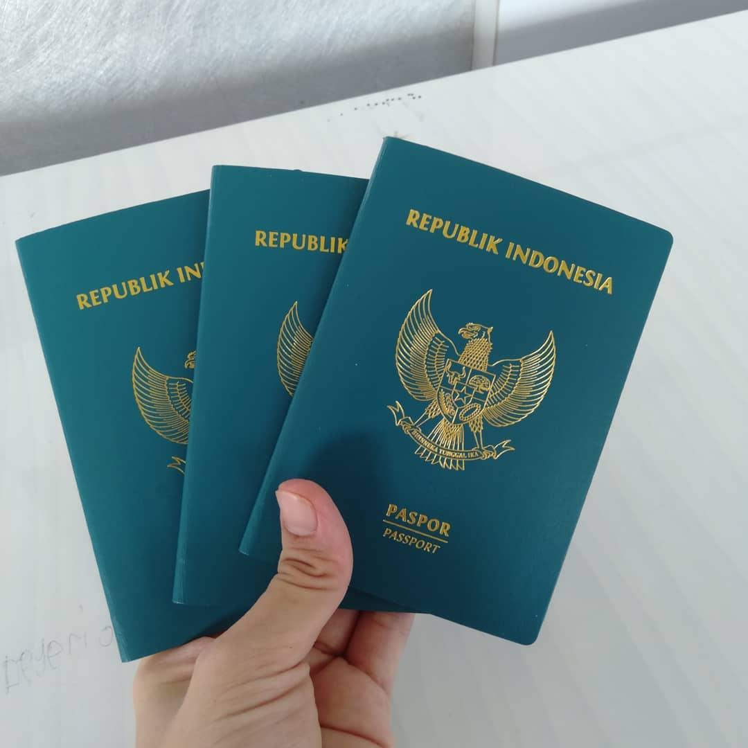Ilustrasi paspor Indonesia. Instagram @ecy_trioriwd