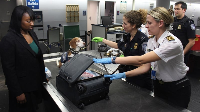Ilustrasi barang sedang diperiksa di custom clearance di bandara. Photo by CDC on Unsplash