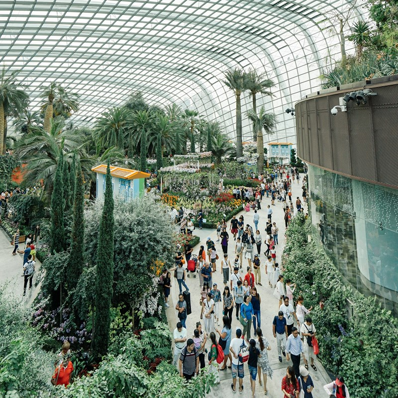 Ilustrasi turis di Jewel Changi Aiport. Photo by Bady Abbas on Unsplash