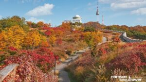 Namsan Seoul Tower. Instagram @namsanseoultower